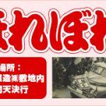 「第12回ヒシクほれぼれ祭り」に出展します