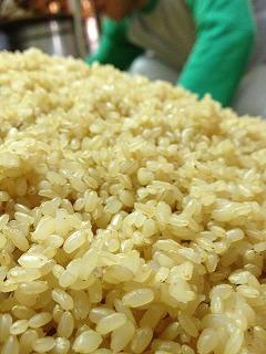 ミネラル分の多い丸玄米